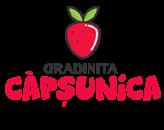Gradinita Capsunica – gradinita privata sector 3